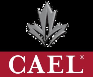 CAEL_V_WEB (2)